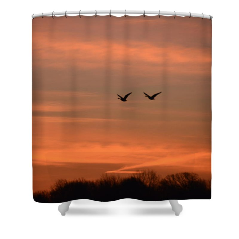 Geese Shower Curtain featuring the photograph Canadian Geese Morning Flight by Randy J Heath