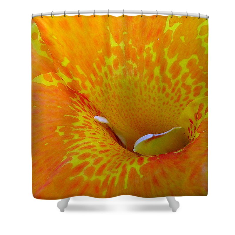 Orange Yellow Flower Shower Curtain featuring the photograph Canna by Luciana Seymour