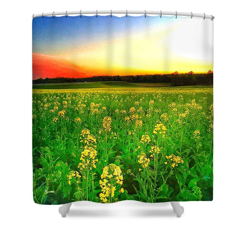 Red Shower Curtain featuring the photograph Canola Field by Lisa Dennae