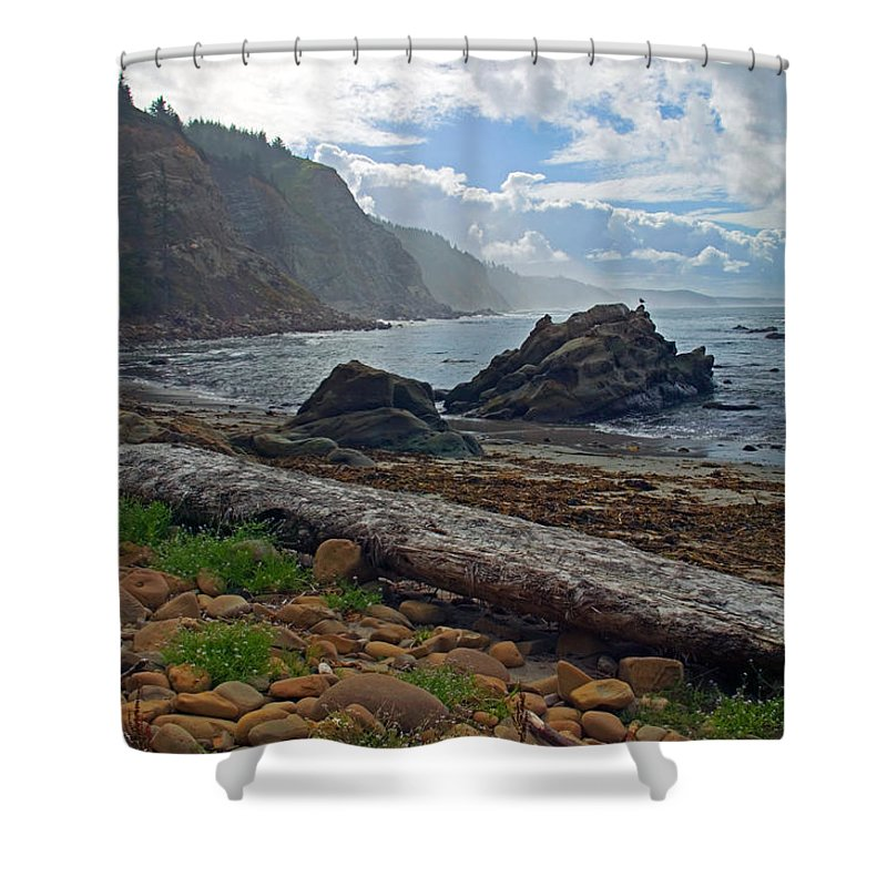 Cape Arago Shower Curtain featuring the photograph Cape Arago Oregon by Randall Ingalls