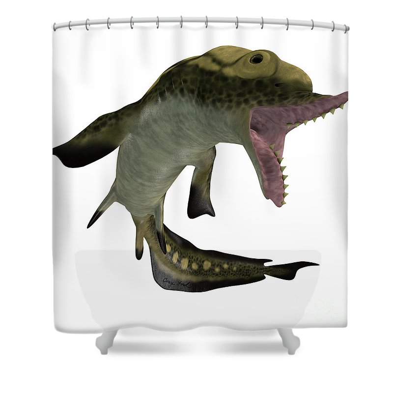 Edestus Shark Shower Curtain featuring the painting Carboniferous Edestus Shark by Corey Ford