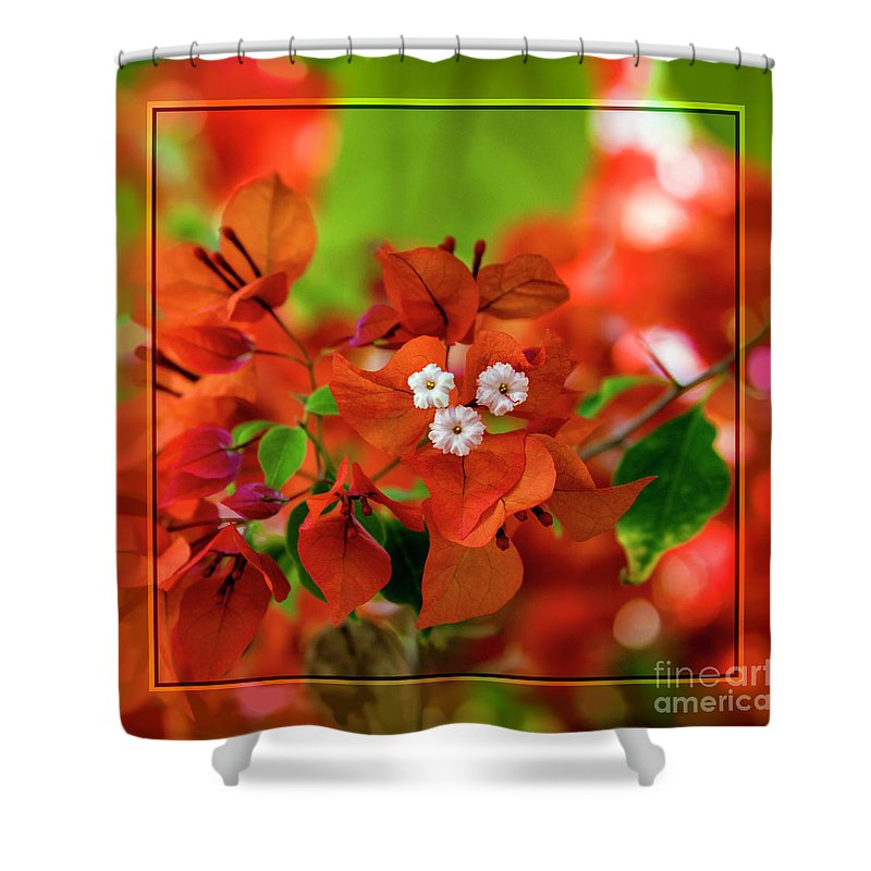 Kasia Shower Curtain featuring the photograph Caribbean Floral Surprise by Kasia Bitner