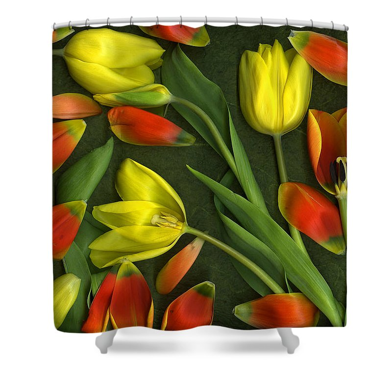 Red Shower Curtain featuring the photograph Carnival by Christian Slanec