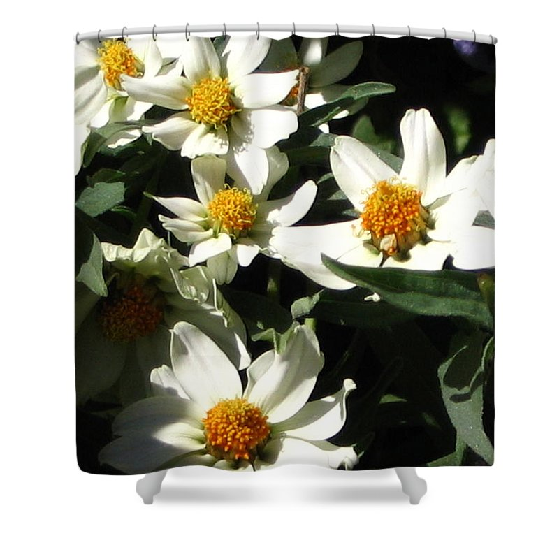 Floral Shower Curtain featuring the photograph Cascade Of White Flowers by Line Gagne