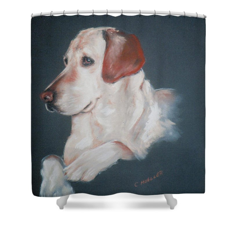 Dog Shower Curtain featuring the painting Casey by Carol Mueller