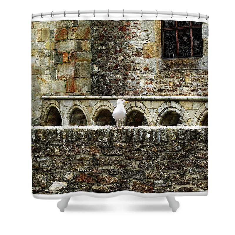 Arch Shower Curtain featuring the photograph Castle Bird by Joan Minchak