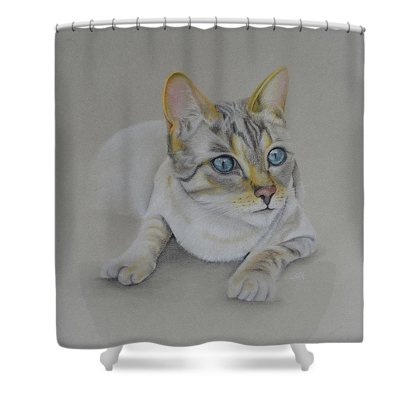 Cat. Cats Shower Curtain featuring the pastel cat drawing - Jackson by Catt Kyriacou