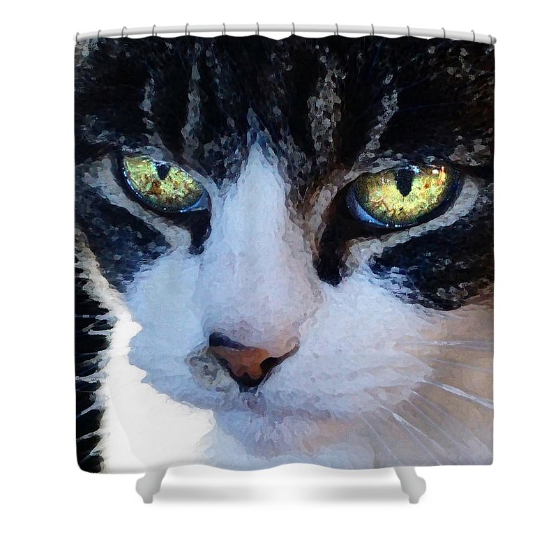 Cat Shower Curtain featuring the digital art Cat Eyes by Jana Russon