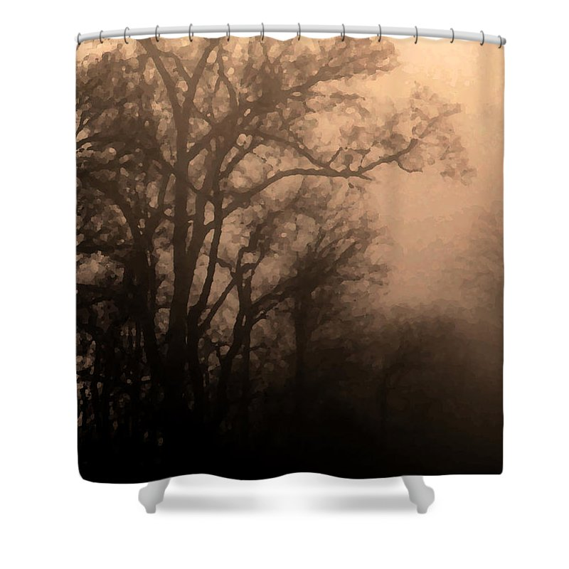Soft Shower Curtain featuring the photograph Caught Between Light And Dark by Amanda Barcon