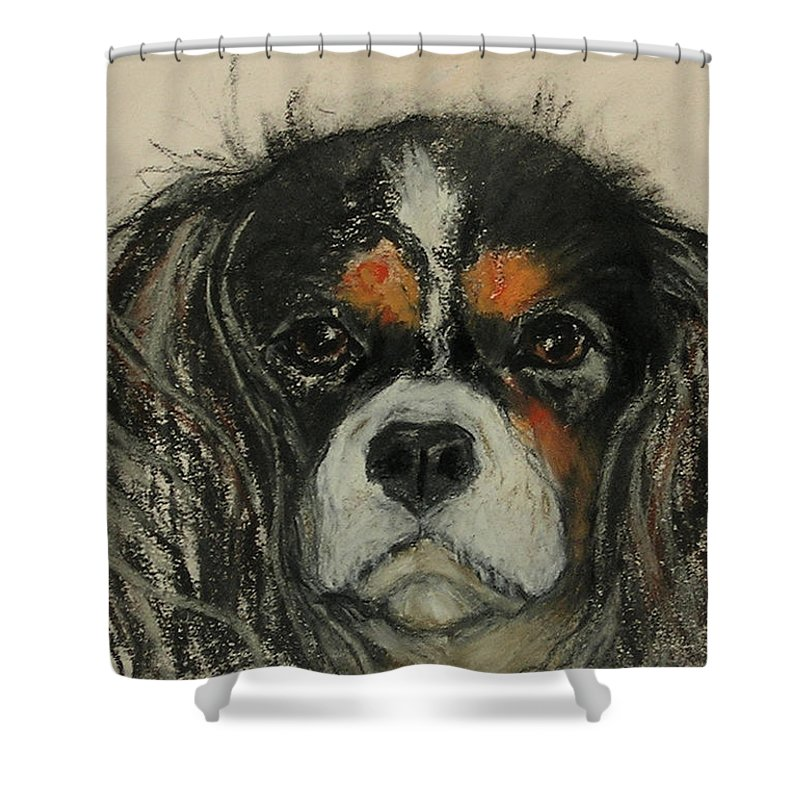 Cavalier Shower Curtain featuring the drawing Cavalier by Cori Solomon