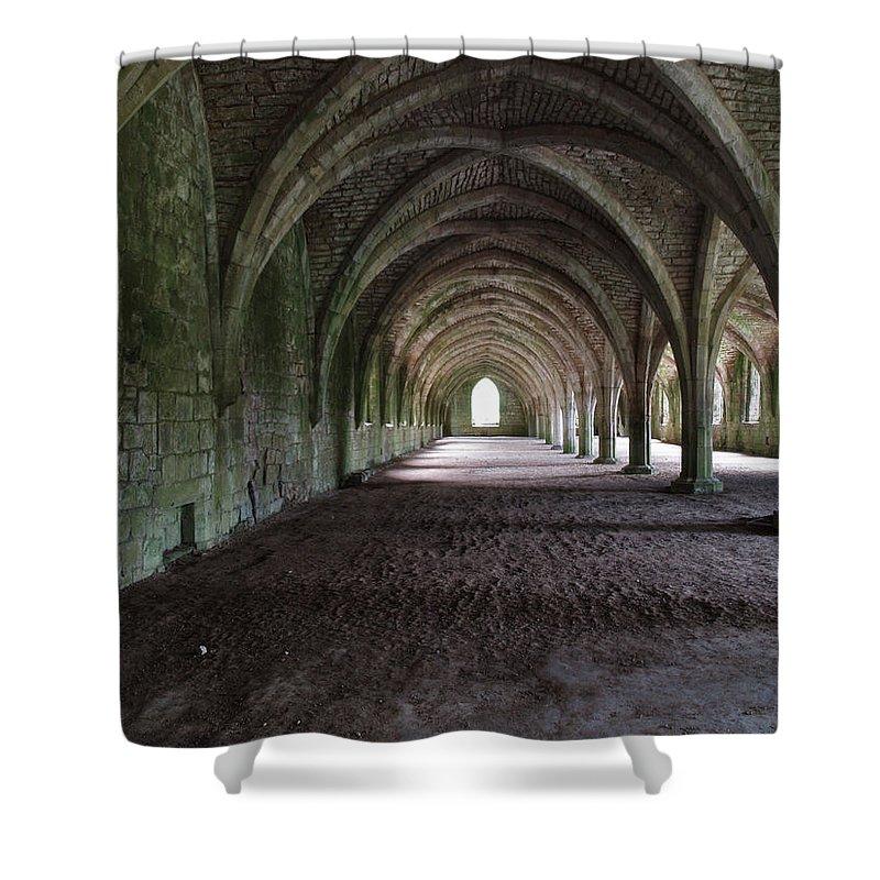 Designs Similar to Cellarium by Steve Watson