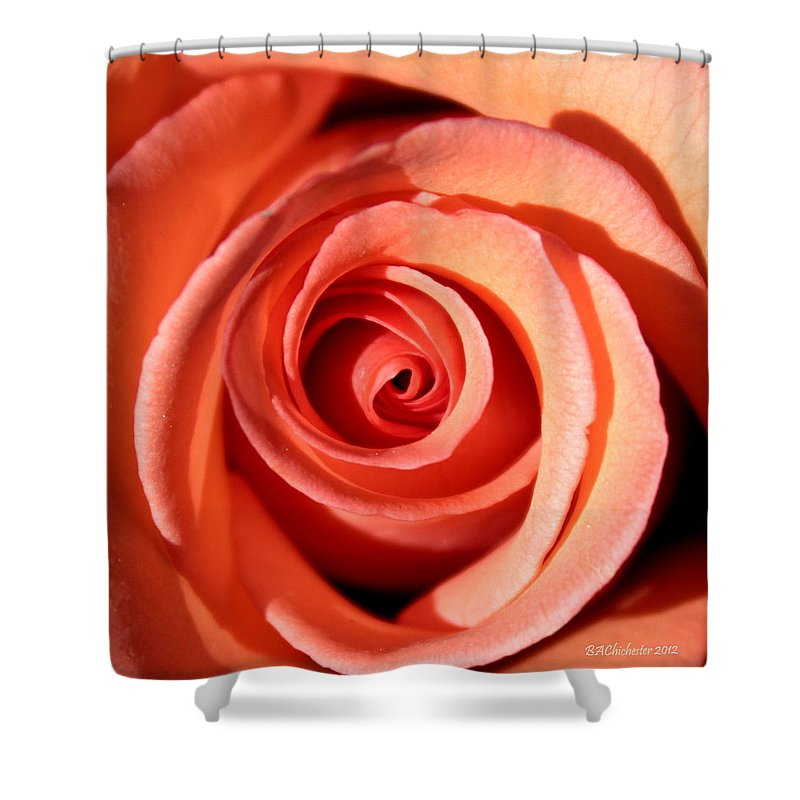 Rose Shower Curtain featuring the photograph Center Of The Peach Rose by Barbara Chichester