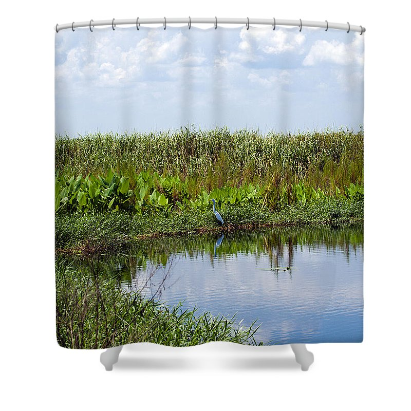 Florida; River; St; Johns; Saint; John; Flow; Flows; North; South D;; Flowing; Current; Back Shower Curtain featuring the photograph Central Florida Backwater by Allan Hughes