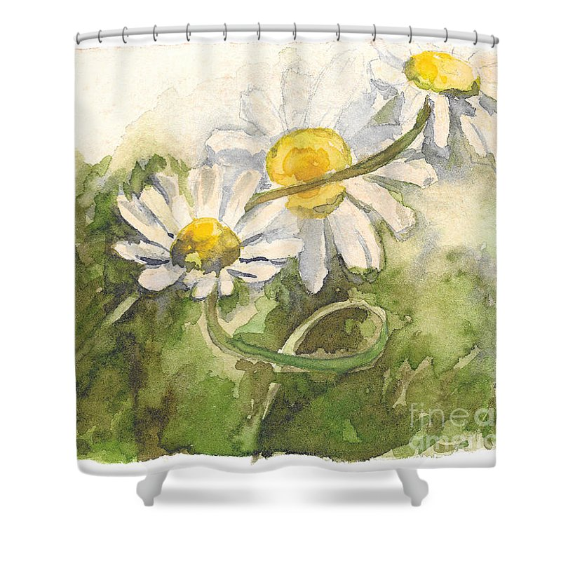 Chamomile Shower Curtain featuring the painting Chamomile by Yana Sadykova