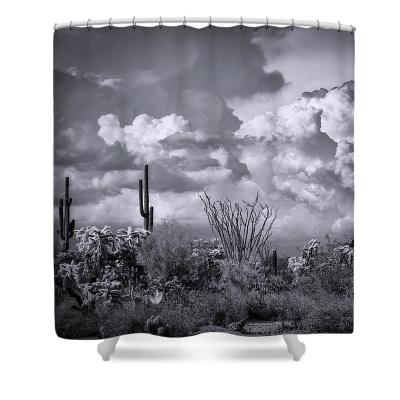 Arizona Shower Curtain featuring the photograph Chasing Clouds Again In Black And White by Saija Lehtonen