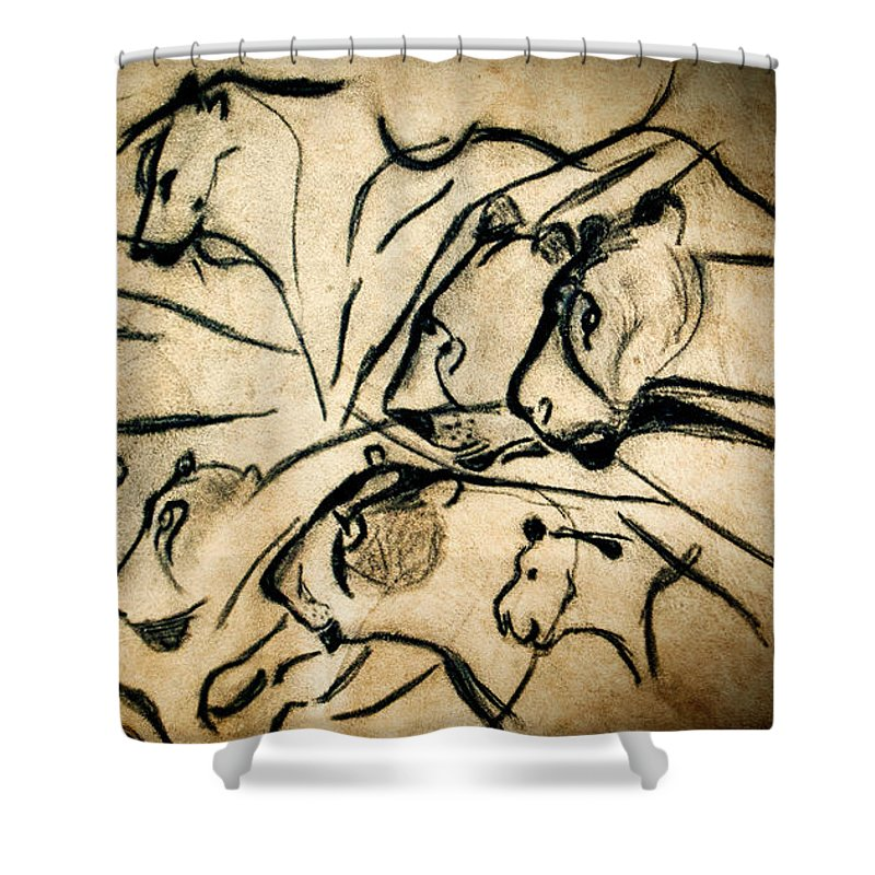 Chauvet Cave Lions Shower Curtain For Sale By Weston Westmoreland