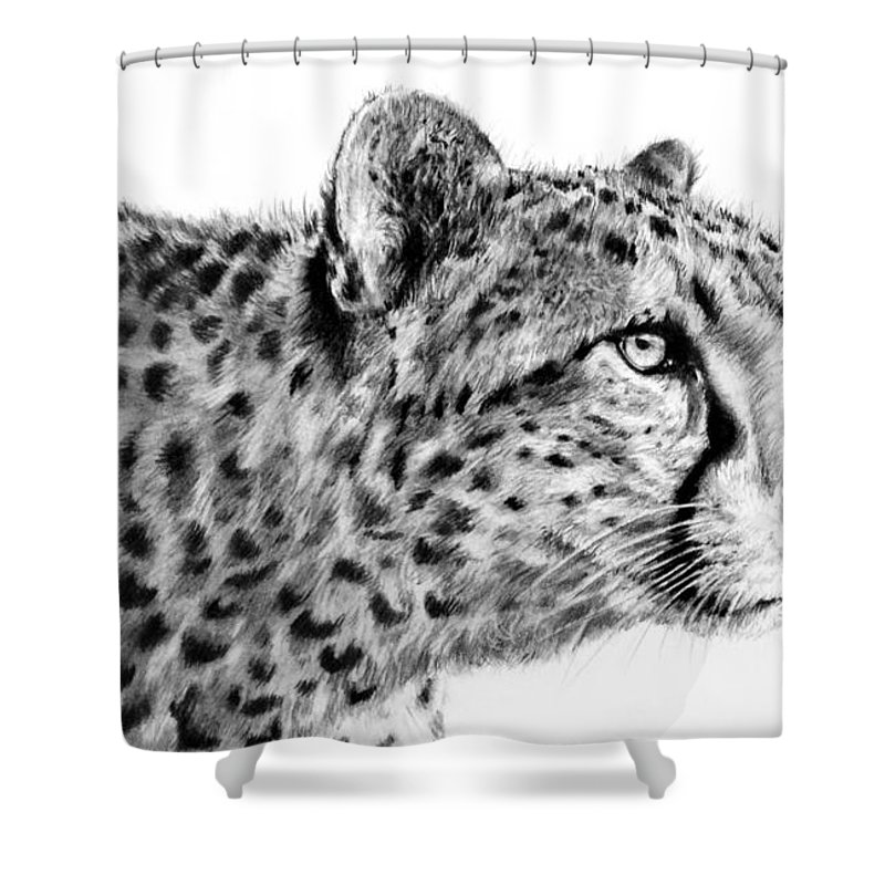 Cheetah Shower Curtain Featuring The Drawing By Lachri