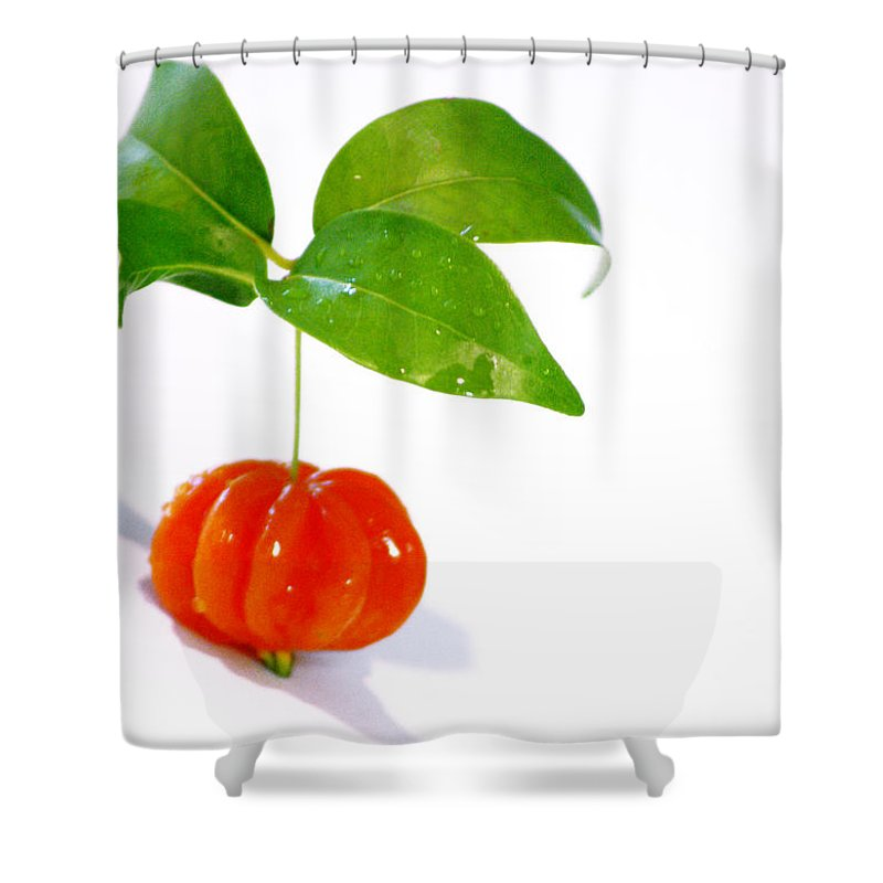 Food Shower Curtain featuring the photograph Cherry by Holly Kempe