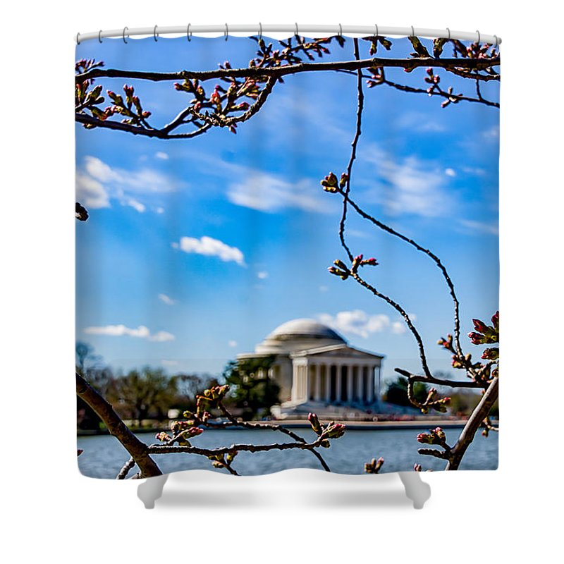 Cherry Tree Shower Curtain featuring the photograph Cherry Tree Buds by Carol Ward