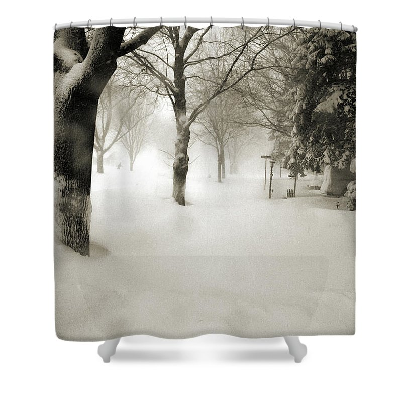 Sepia Shower Curtain featuring the photograph Chicago Blizzard 2011 by Joanne Coyle