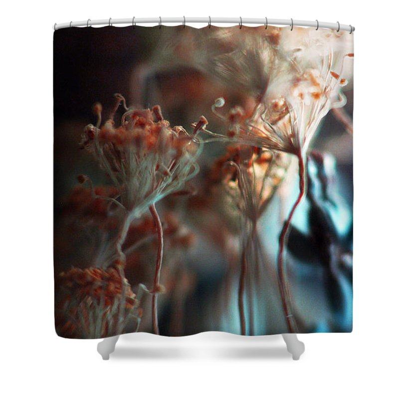 Flowers Shower Curtain featuring the photograph Chill Out... by Arthur Miller