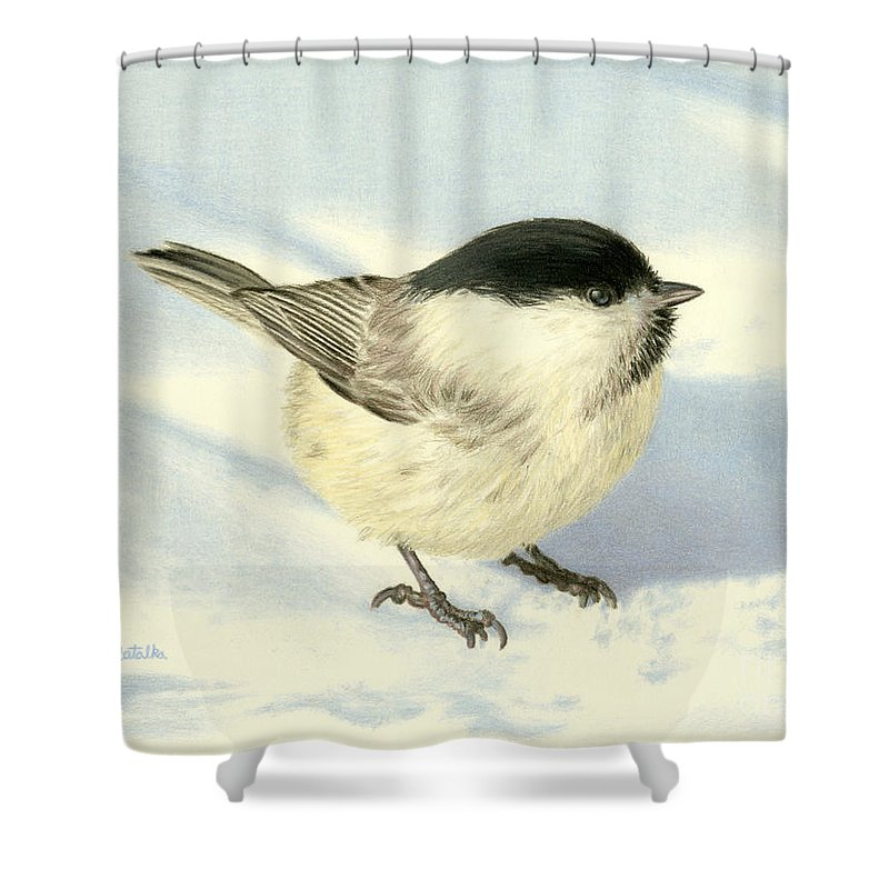 Chickadee Shower Curtain featuring the painting Chilly Chickadee by Sarah Batalka