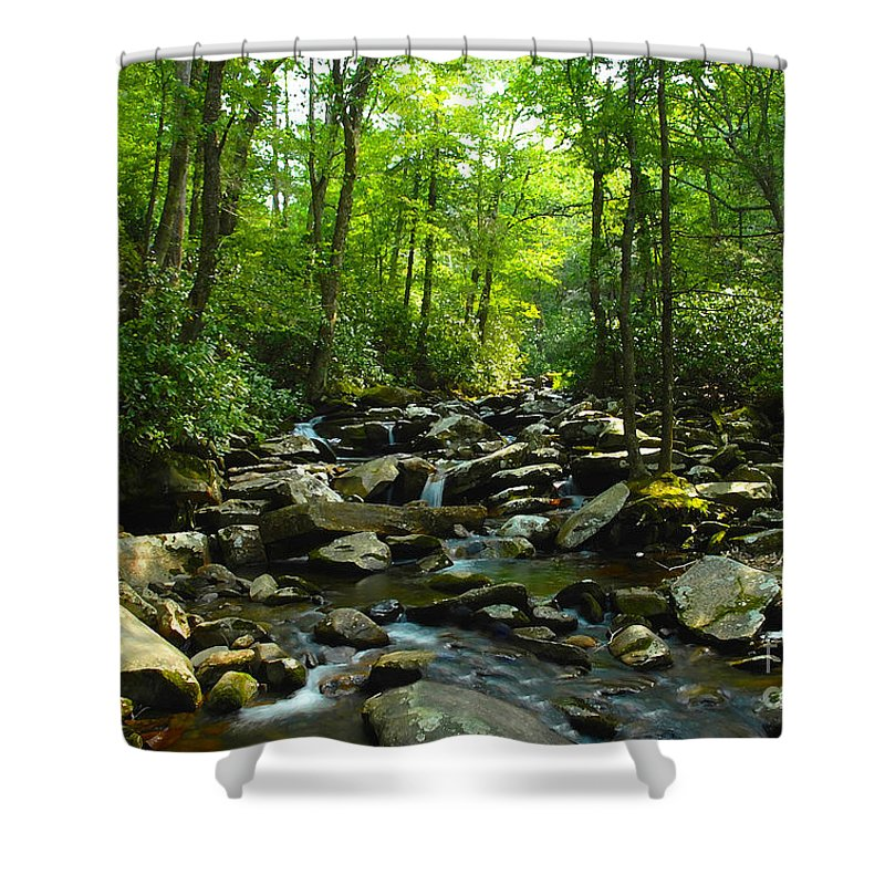 Trail Shower Curtain featuring the photograph Chimney Tops Trail by David Lee Thompson