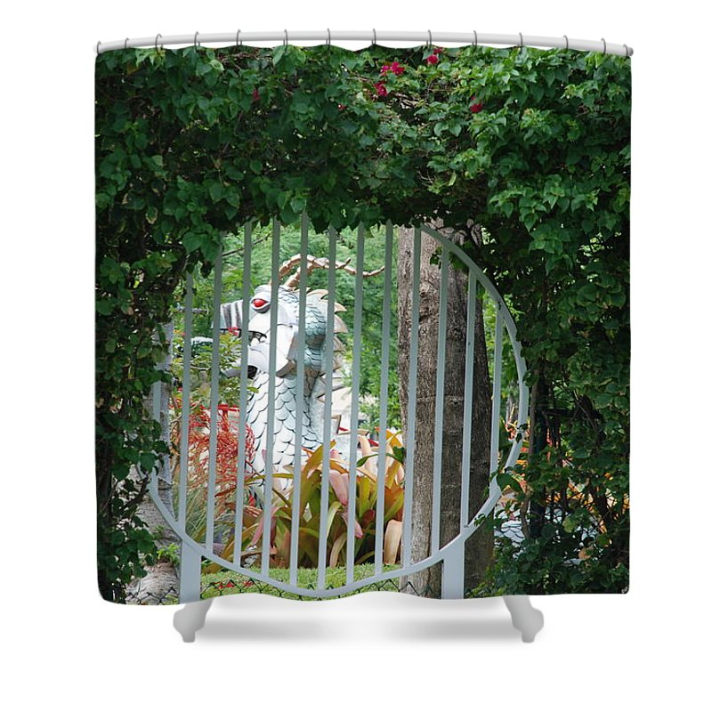 Chinese Dragon Shower Curtain featuring the photograph Chinese Dragon by Rob Hans