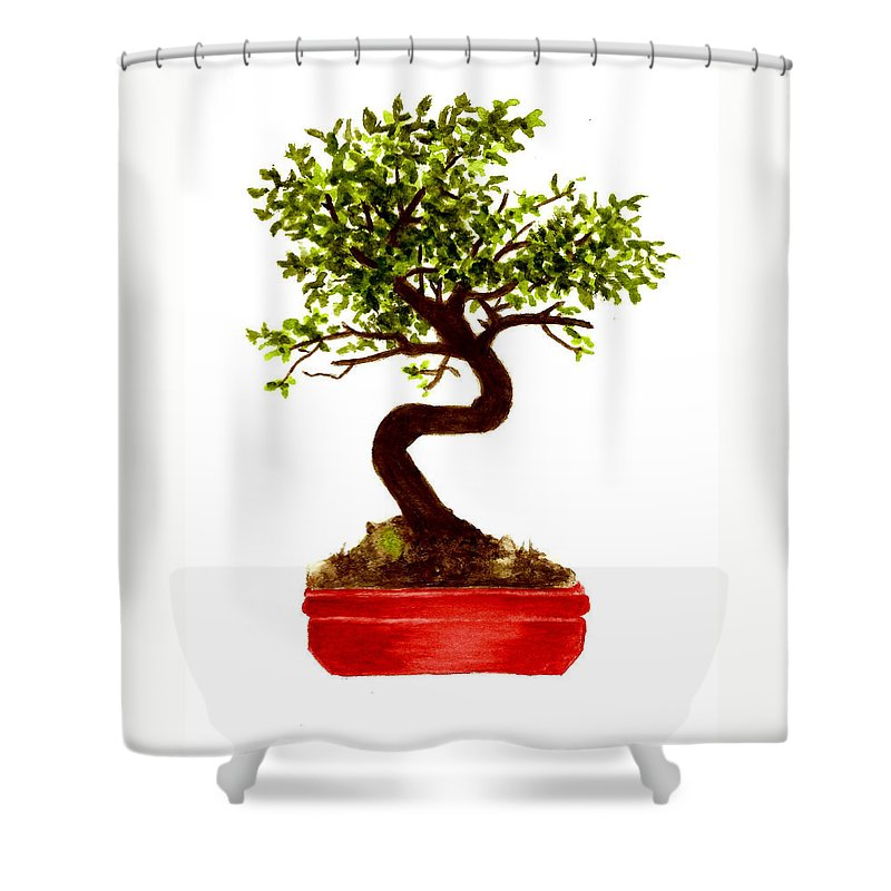 Tree Shower Curtain featuring the painting Chinese Elm Bonsai Tree by Michael Vigliotti