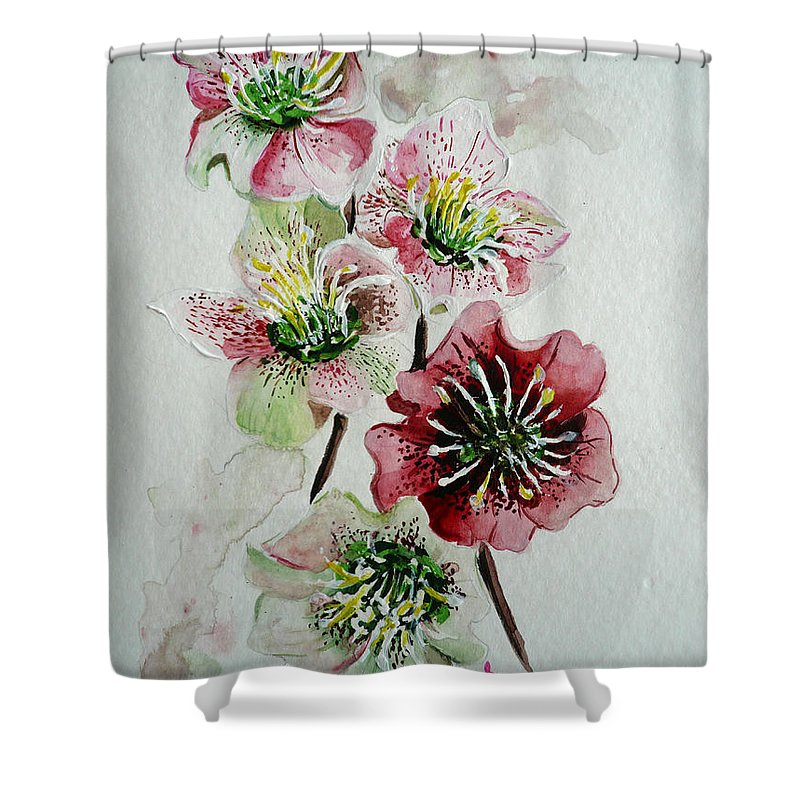 Floral Flower Pink Shower Curtain featuring the painting Christmas Rose by Karin Dawn Kelshall- Best
