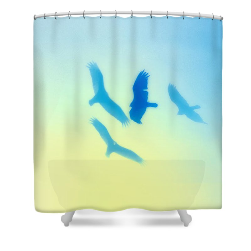 Hawks Shower Curtain featuring the photograph Circling by Bill Cannon