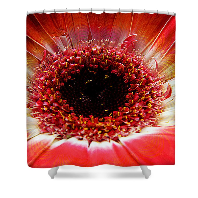 Clay Shower Curtain featuring the photograph Circumvent by Clayton Bruster