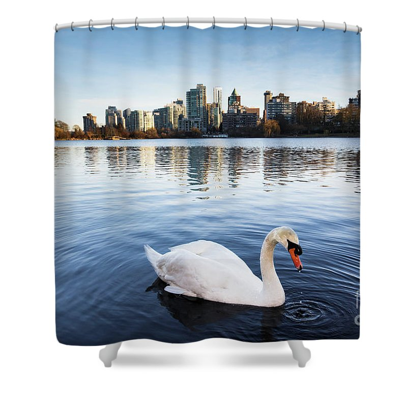 Swan Shower Curtain featuring the photograph City Swan by Marc Stuelken