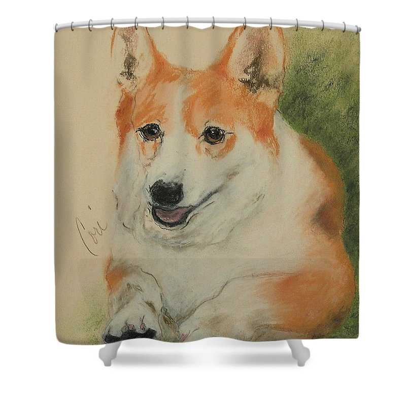 Pastel Shower Curtain featuring the drawing Clear Run by Cori Solomon