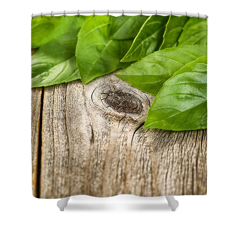 Basil Shower Curtain featuring the photograph Close Up Fresh Basil Leafs On Rustic Wooden Boards by Thomas Baker