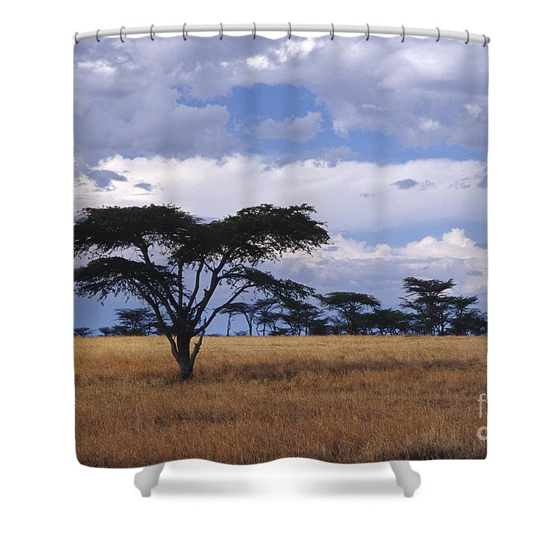 Africa Shower Curtain featuring the photograph Clouds Over The Masai Mara by Sandra Bronstein