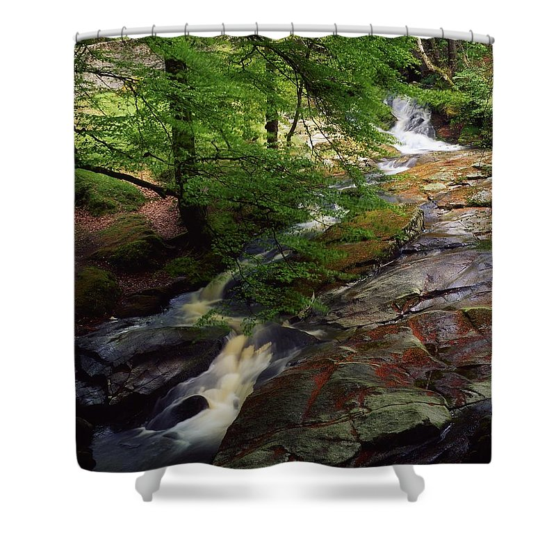 Deciduous Shower Curtain featuring the photograph Cloughleagh Wood, Kilbride, Ireland by The Irish Image Collection