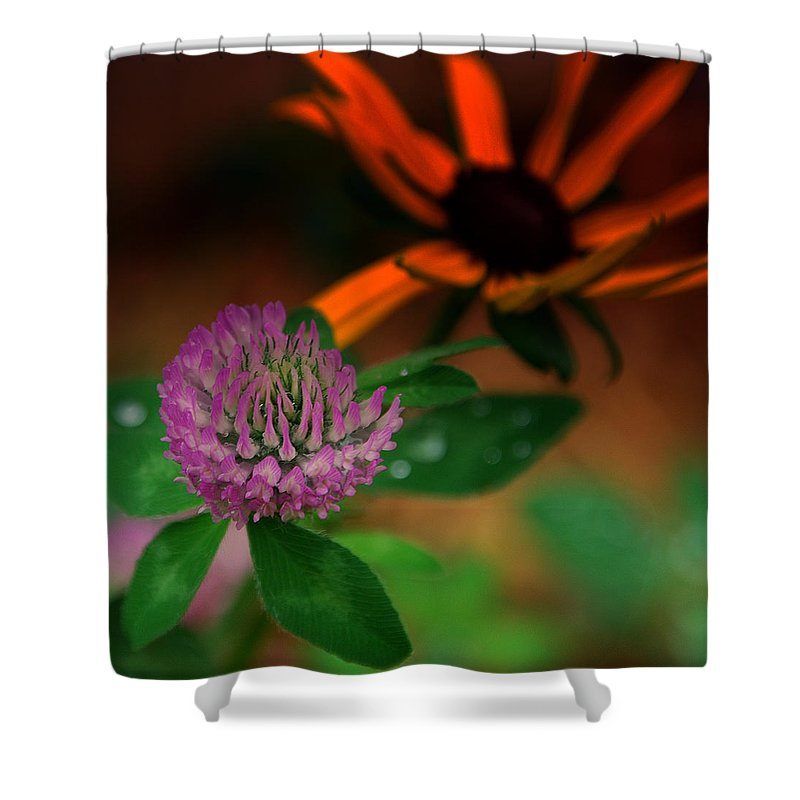 Clover Shower Curtain featuring the photograph Clover in my yard by Susanne Van Hulst