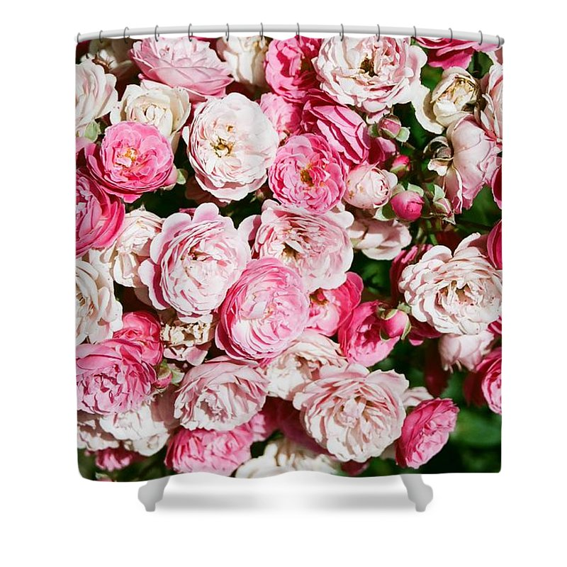 Rose Shower Curtain featuring the photograph Cluster Of Roses by Dean Triolo