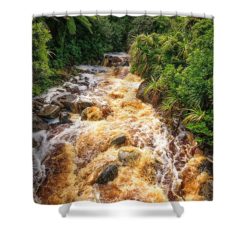 Karamea Shower Curtain featuring the photograph Coal Creek Rapids by Robert Green
