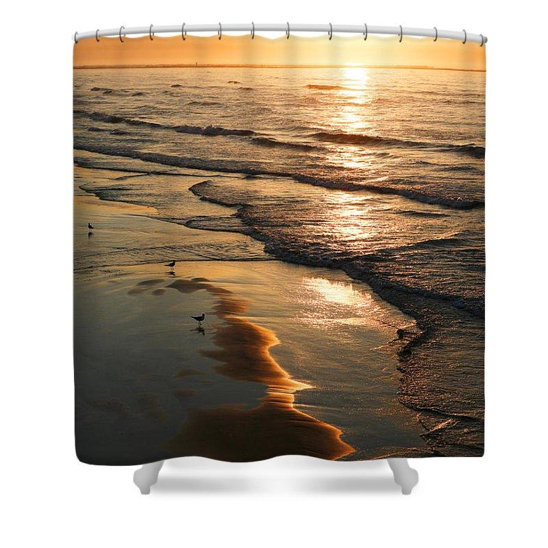 Beach Shower Curtain featuring the photograph Coastal Sunrise by Marilyn Hunt