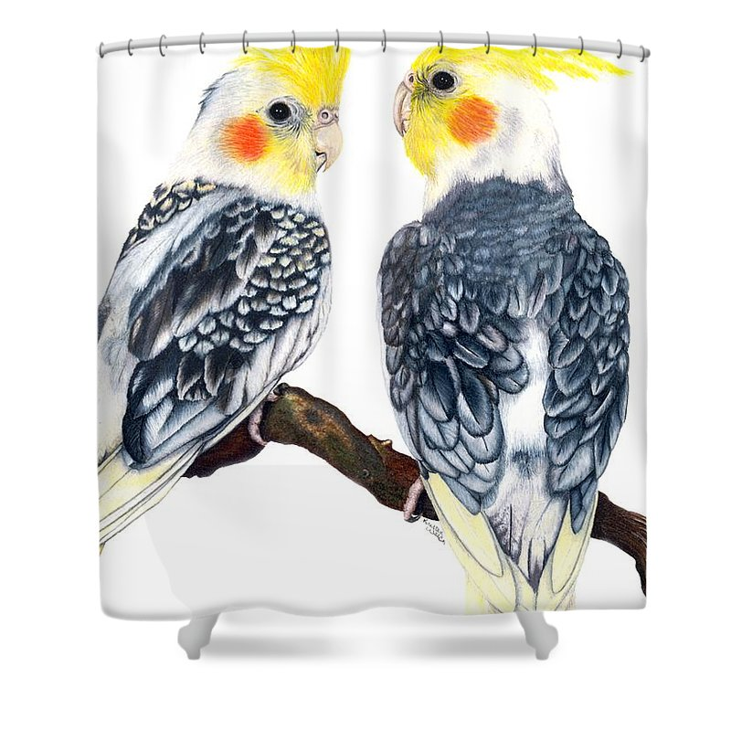 Cockatiel Shower Curtain featuring the drawing Cockatiels by Kristen Wesch