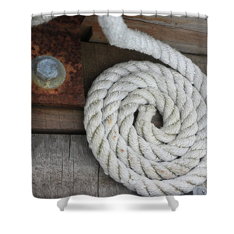 White Shower Curtain featuring the photograph Coiled by Dorothy Hilde