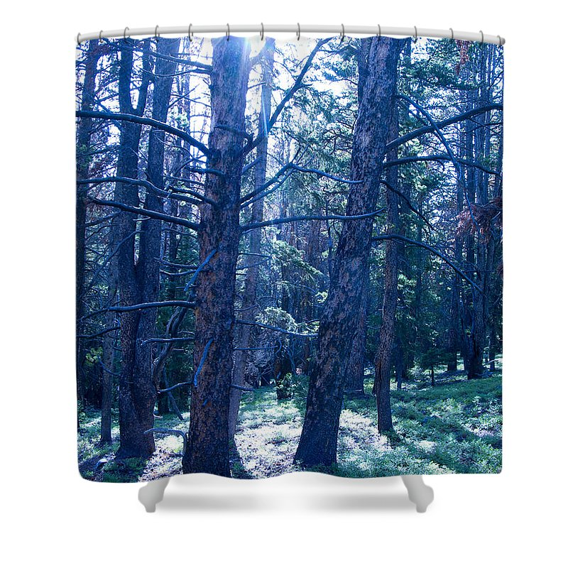 Blue Shower Curtain featuring the photograph Cold Mountain Light by Jeffery Ball