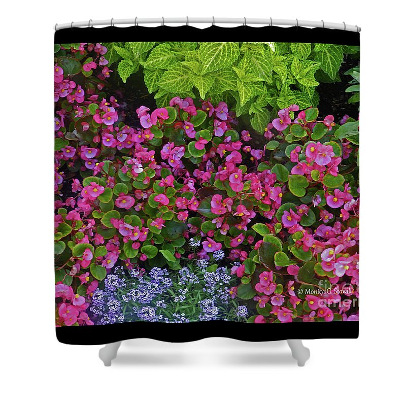 Garden Flowers Shower Curtain featuring the photograph Color Combination Flowers Cc73 by Monica C Stovall