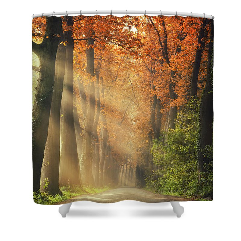 Colors Shower Curtain featuring the photograph Color Competition by Martin Podt
