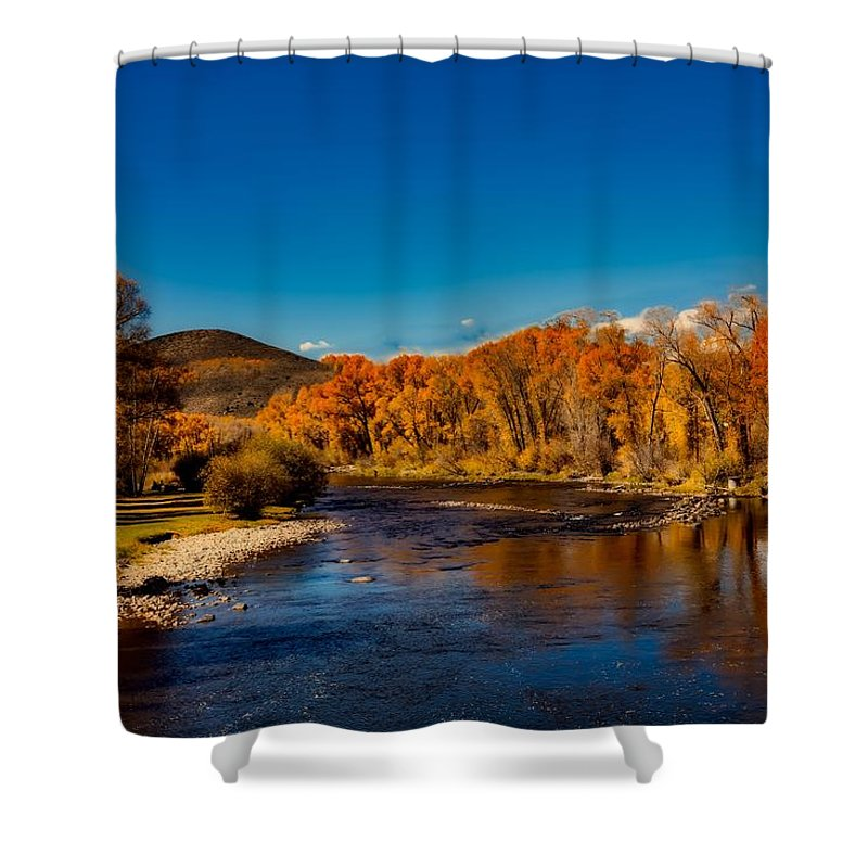 Sky Shower Curtain featuring the photograph Colorado Cottonwoods In Autumn by Mountain Dreams