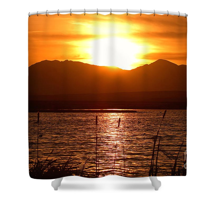 Colorado Shower Curtain featuring the photograph Colorado Marsh At Sunset by Max Allen