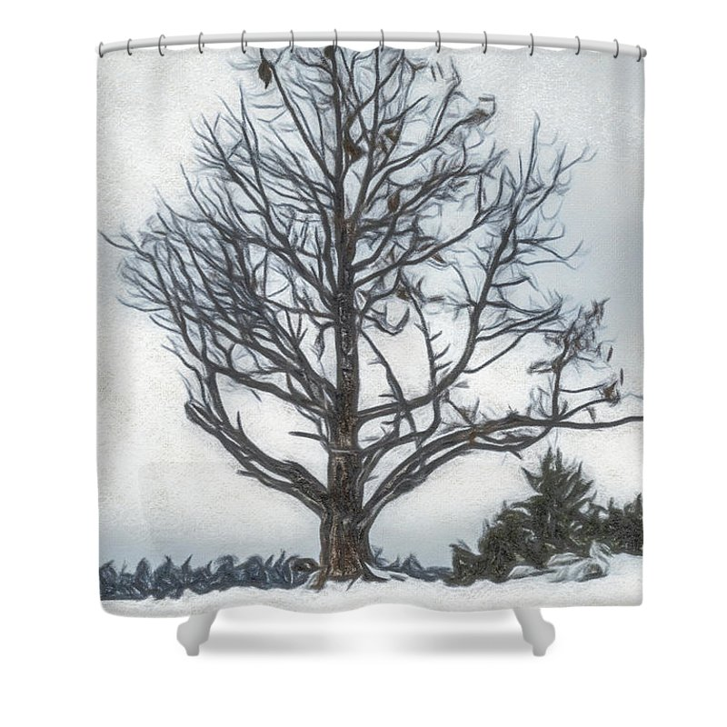 Big Bear Shower Curtain Featuring The Drawing Colored Pencil Flozen Lake Climate Change At