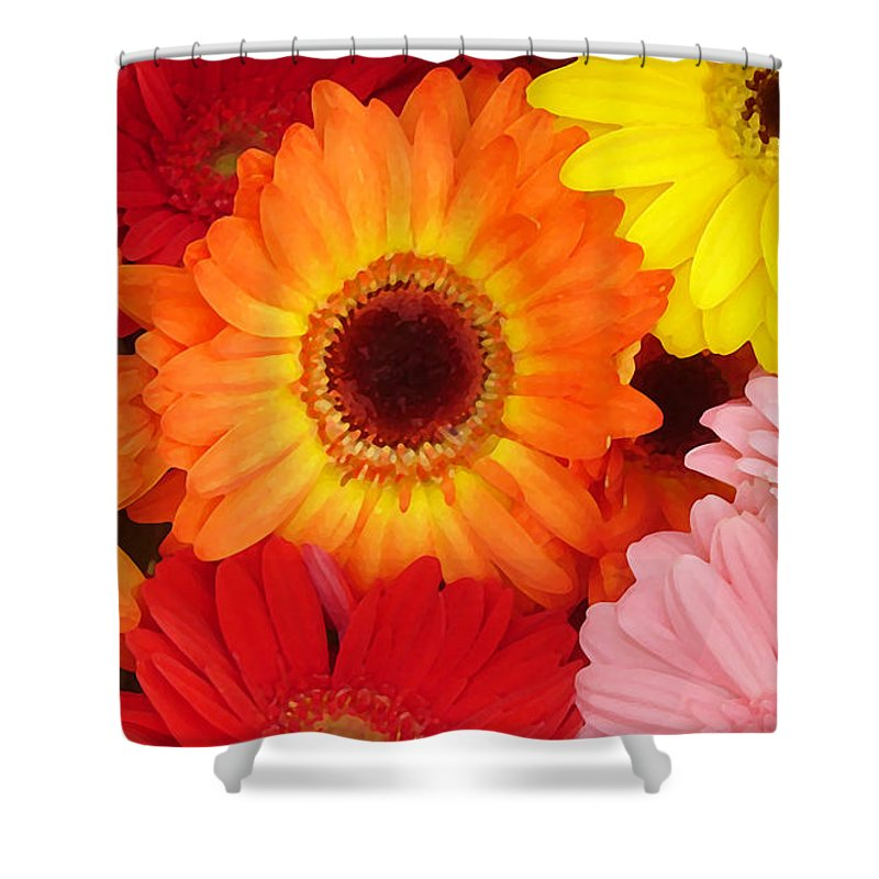 Gerber Daisy Shower Curtain featuring the painting Colorful Gerber Daisies by Amy Vangsgard